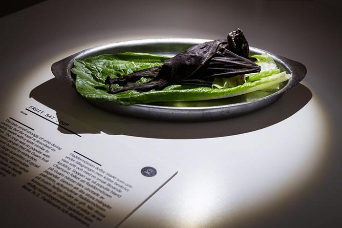 Фруктовая летучая мышь, используется для приготовления супа.